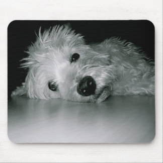Westie Relaxing Mouse Pads