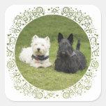 Westie & Scottie Green Grass Square Stickers