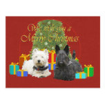 Westie & Scottie Merry Christmas Postcard