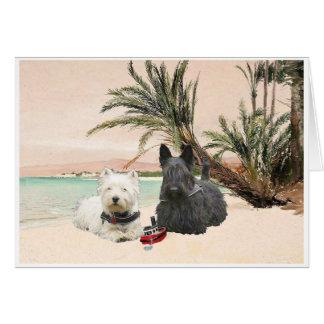 Westie & Scottie on Palmy Beach Card