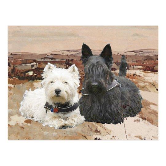Westie & Scottie Together Autumn Postcard