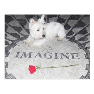 Westie se imagina paz de mundo postal