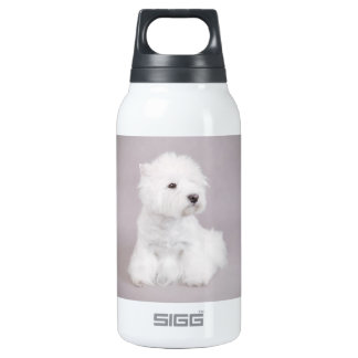 Westie SIGG Thermo 0.3L Insulated Bottle