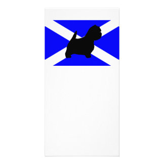 westie silo on Scotland flag.png Card