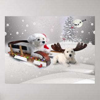 Westie sledding con el reno de Westie Póster
