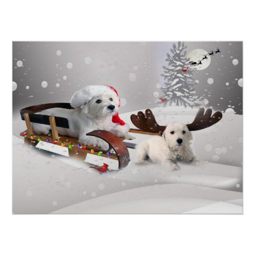 Westie sledding with Westie reindeer Print