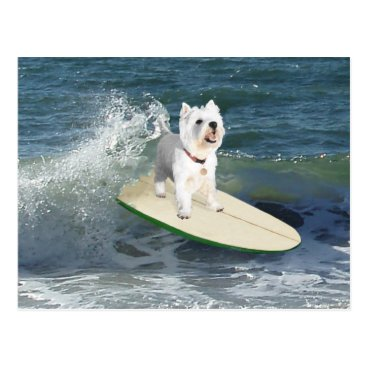 Beach Themed Westie Surfer Postcard