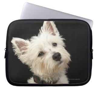 Westie (terrier del oeste de la montaña) con el cu mangas computadora