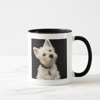 Westie (terrier del oeste de la montaña) con el taza