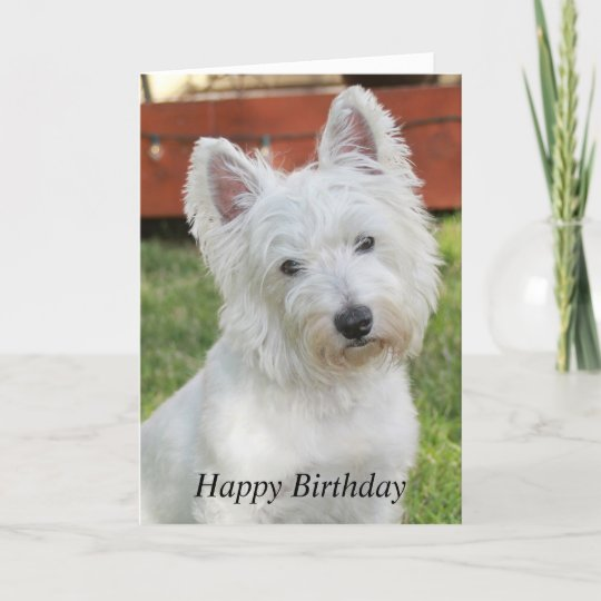 Westie West Highland Terrier Dog Birthday Card Zazzle