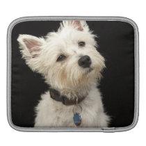 Westie (West Highland terrier) with collar iPad Sleeve