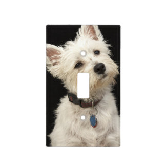 Westie (West Highland terrier) with collar Light Switch Cover