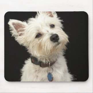 Westie (West Highland terrier) with collar Mouse Pad