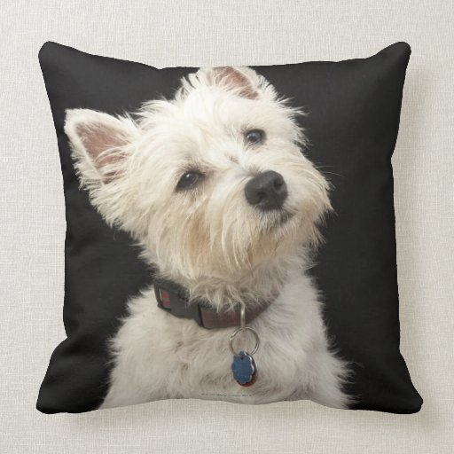 Westie (West Highland terrier) with collar Throw Pillows