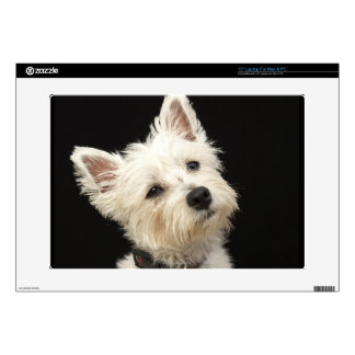 Westie (West Highland terrier) with collar Skins For Laptops