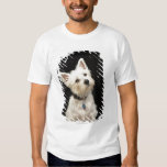 Westie (West Highland terrier) with collar T Shirts