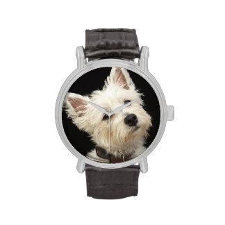 Westie (West Highland terrier) with collar Watch