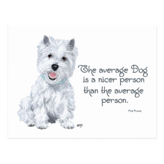 Westie Wisdom - The average Dog is a nicer person Postcard
