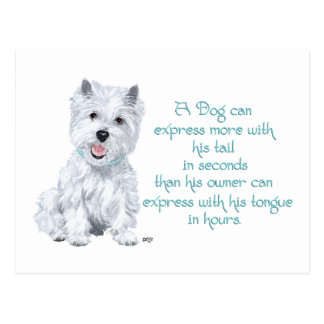 Westie Wisdom - Wagging Tail or Tongue? Postcard