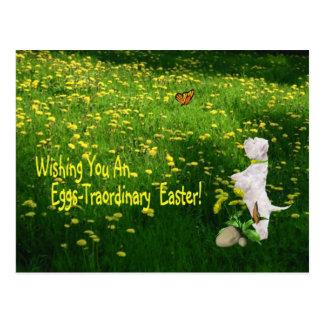 Westie Wishing You An Eggs - Traordinary Easter Post Card
