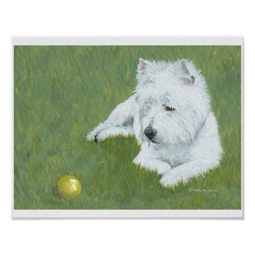Westie with a Ball Posters