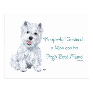 Westie Words of Wisdom Postcard