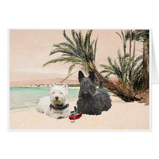 Westie y escocés en la playa con muchas palmas tarjeta de felicitación