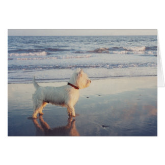 Westies and the Ocean Greeting Card