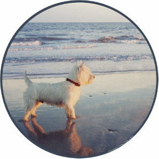 Westies and the Ocean Statuette