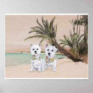 Westies en una playa con muchas palmas póster