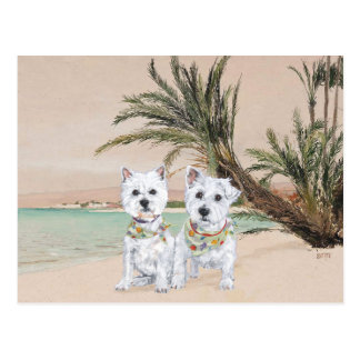 Westies on a Palmy Beach Postcard