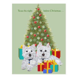 Westies por el árbol de navidad postales