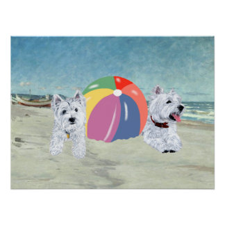 Westies with a Beach Ball Poster