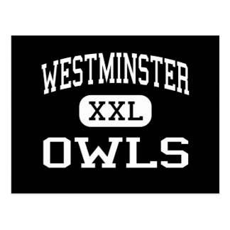 Westminster - búhos - alta - Westminster Maryland Postales