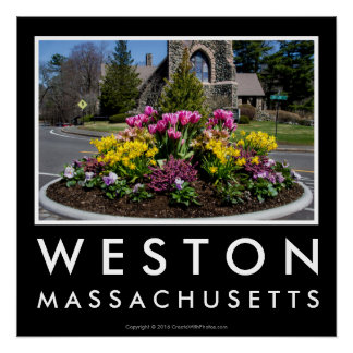 Weston Town Center Flowers Poster