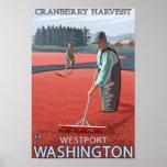 Westport, WashingtonCranberry Bog Harvest Print