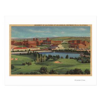 Westwood Hills, CA - View of U.C.L.A. Campus Postcard