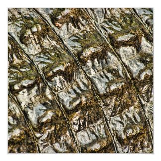 Wet Alligator Back Abstract Photograph 5.25x5.25 Square Paper Invitation Card