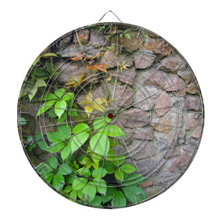 Wet and green shoots of wild grapes dartboard