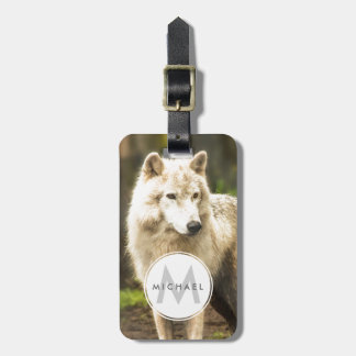 Wet Arctic Wolf in Spring Photo Bag Tag
