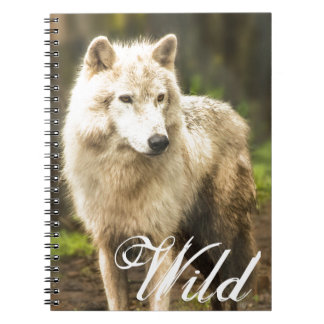 Wet Arctic Wolf in Spring Photo Notebook