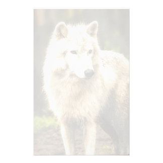 Wet Arctic Wolf in Spring Photo Stationery