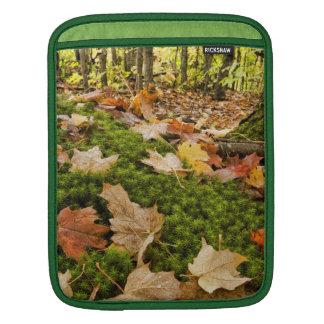 Wet Autumn Forest Floor Photograph iPad Sleeves