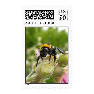 Wet Bee Postage
