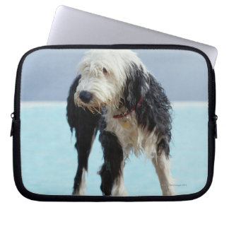 Wet Dog By a Swimming Pool Computer Sleeves