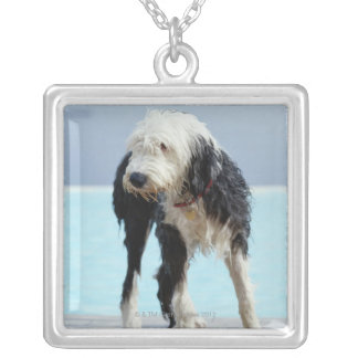 Wet Dog By a Swimming Pool Square Pendant Necklace
