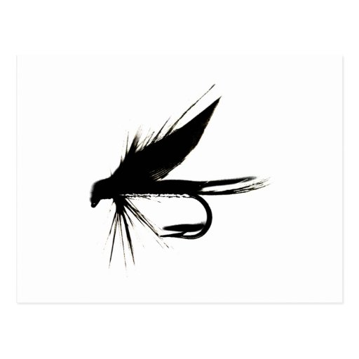Wet Fly Silhouette Postcard