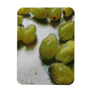 Wet glistening grapes magnet