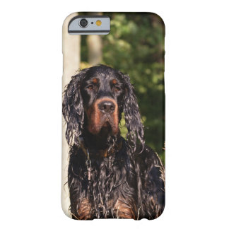 Wet Gordon Setter iPhone 6 case iPhone 6 Case