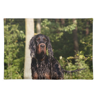Wet Gordon Setter Placemat